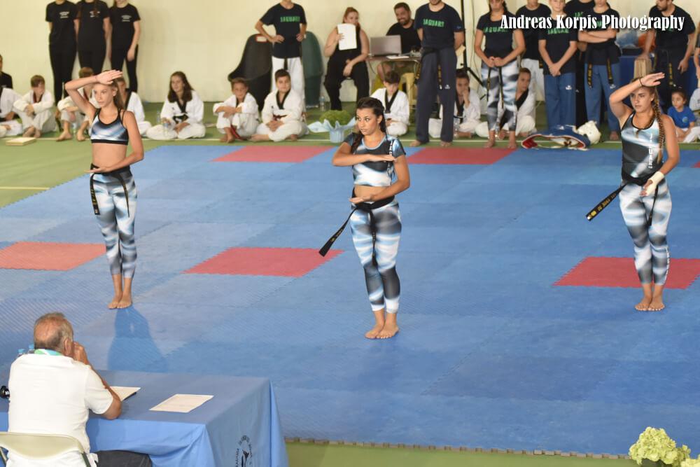 Εξετάσεις DAN 2017 - Taekwondo Jaguar